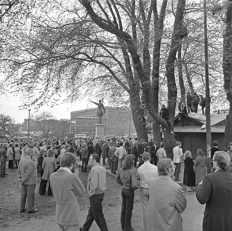 Kungsträdgården, maj 1971. Demonstrationer mot fällningen av almarna -  Stockholmskällan
