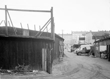ungern 1956